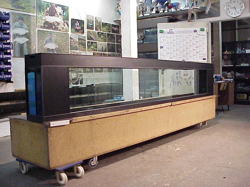 aquarien als raumteiler aquarium l cm raumteiler terrarium in leipzig raumteiler b ro. Black Bedroom Furniture Sets. Home Design Ideas